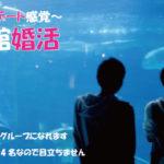 趣味コン「水族館婚活って何?」のアイキャッチ画像|大阪で婚活イベント(婚活パーティーや趣味コン)なら一期一会