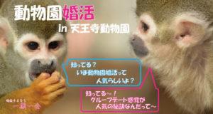 趣味コン「動物園婚活」のアイキャッチ画像|大阪で婚活イベント(婚活パーティーや趣味コン)なら一期一会