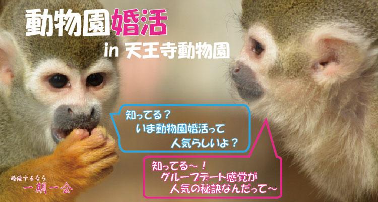 趣味コン|動物園婚活 in 大阪/天王寺